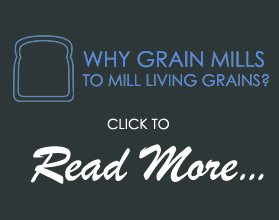 Benefits of Grain Mills